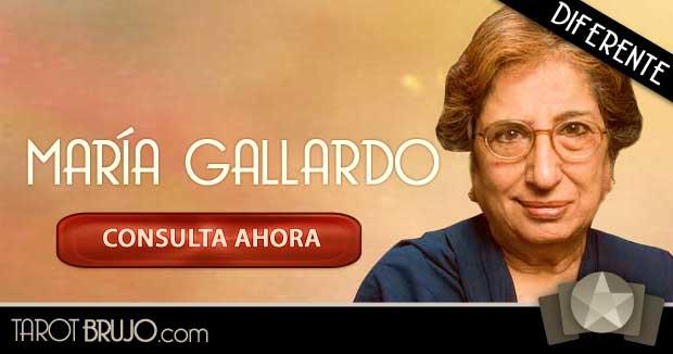 Vidente Maria Gallardo